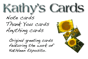 Kathy's Cards